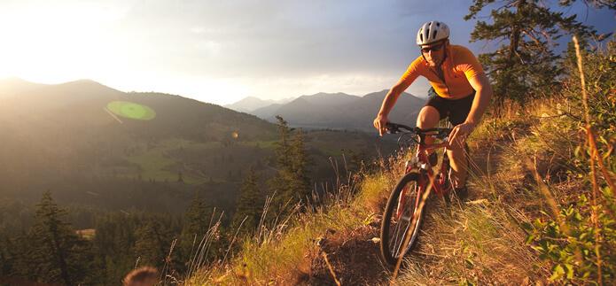 Các bài tập Cardio như chạy bộ, đạp xe hay bơi lội sẽ đánh thức cả cơ thể bạn sẵn sàng trước công việc và các thử thách khác trong ngày