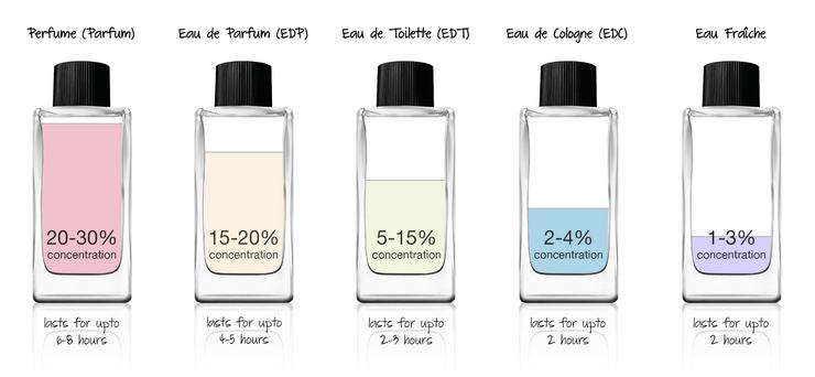 Tỉ lệ chất trong từng kiểu nước hoa. ảnh: Perfumeberry Blog