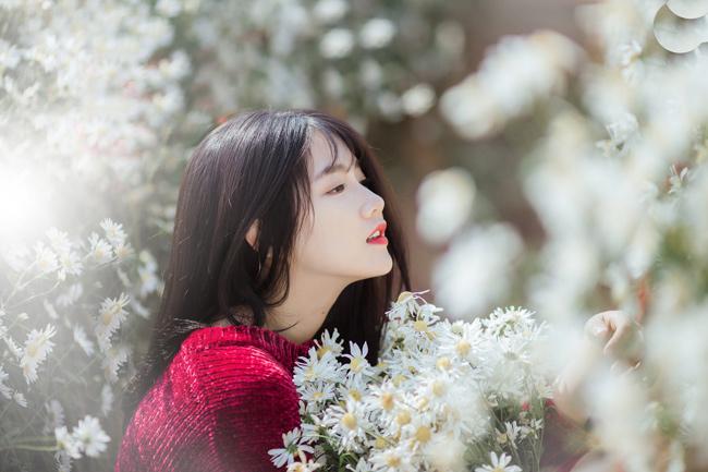 Cô gái Sài thành say mê tạo dáng bên loài hoa đặc trưng của Hà Nội.