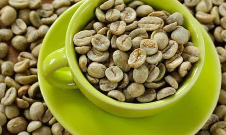 Cà phê xanh là thảo mộc giúp giảm cân