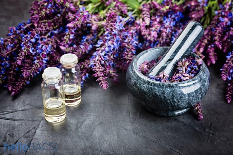 hoa cây xô thơm và chai tinh dầu