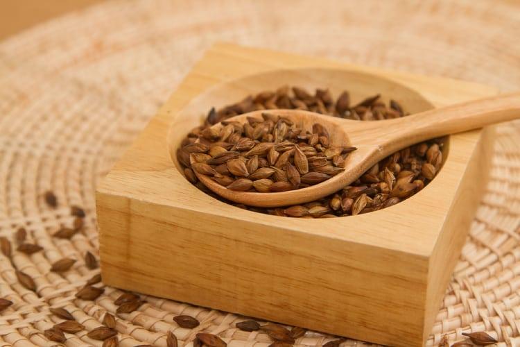 trà hạt lúa mạch