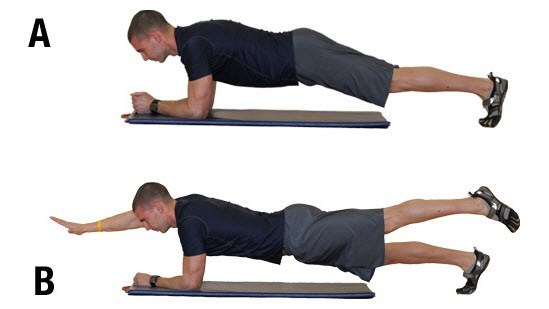 Plank tay
